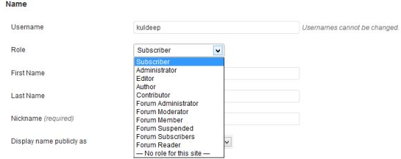 WordPress Role Manager - Hindi