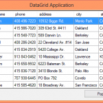 GridView Control – Windows Database Application