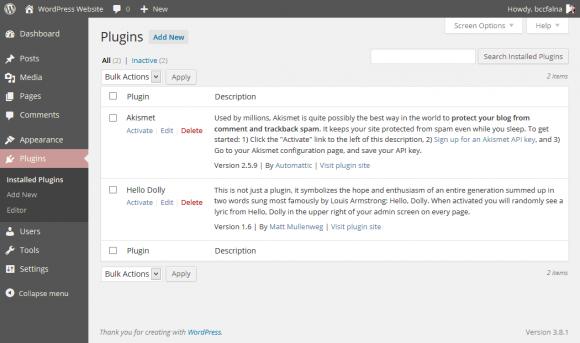 WordPress Plugins Management - Hindi