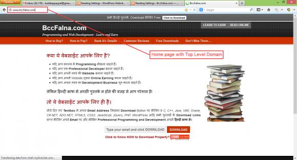 WordPress Reading Settings - Hindi