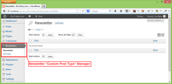 Custom Post Type - Template - Hindi