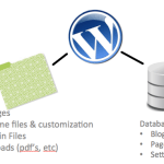 How to Fetch Data from Database in WordPress - Hindi