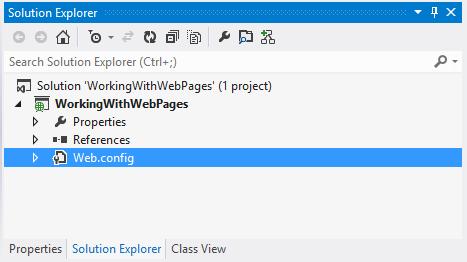 ASP.NET Webpage - Using Visual Studio - Hindi